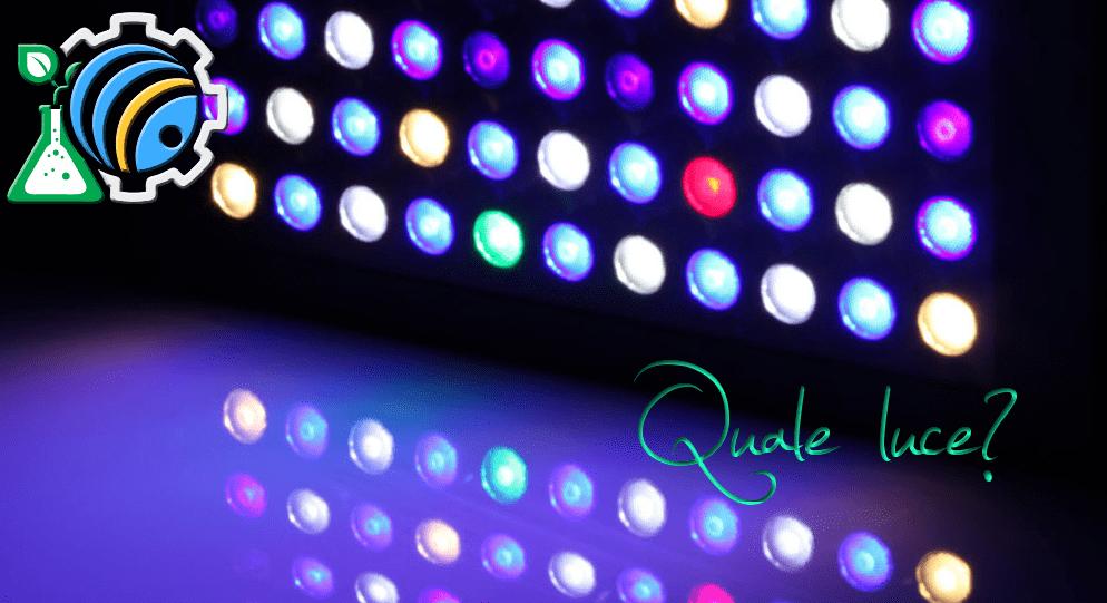 Luce! – 3. Quale luce?