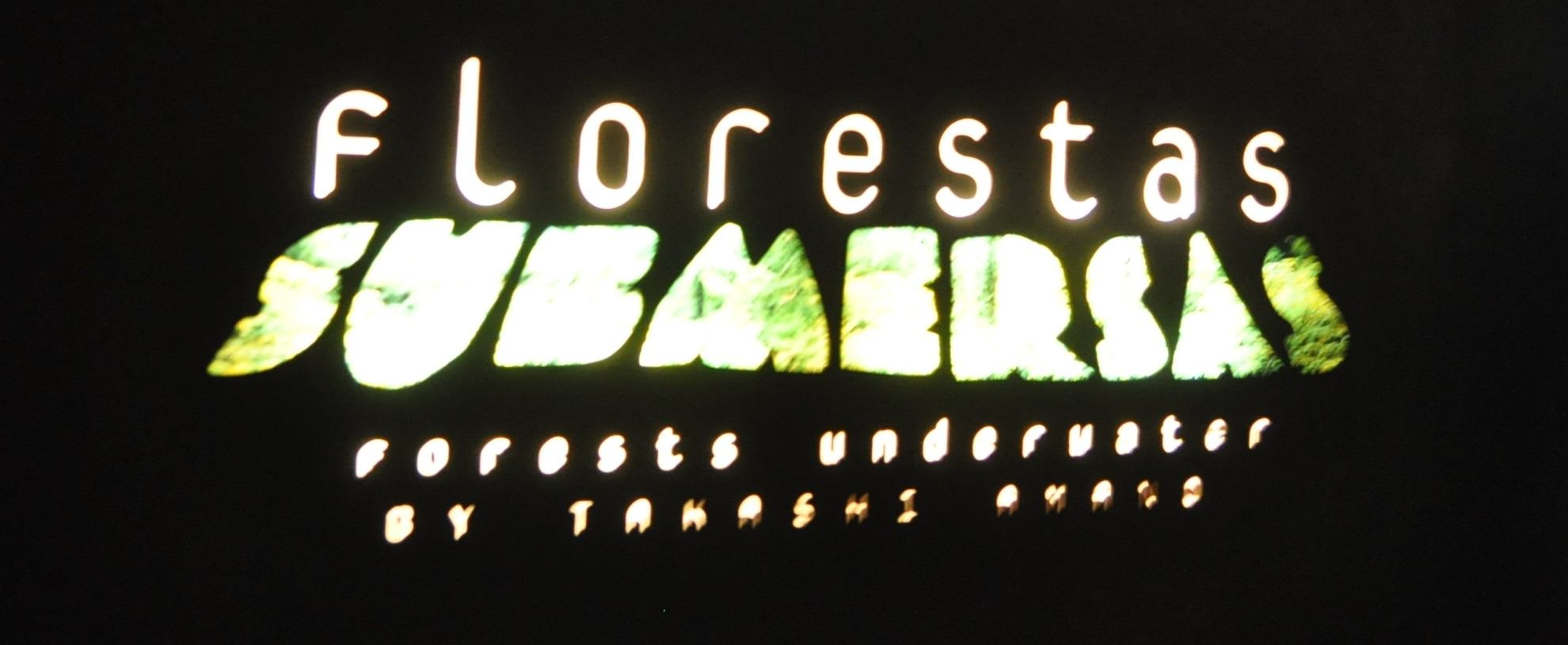 florestas submersas